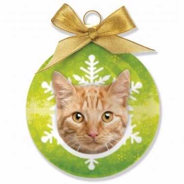 Kinder kerstbal kat rode tabby